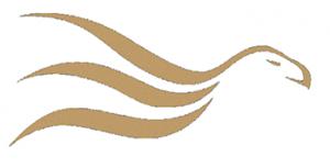 the nicolas hamond academy logo