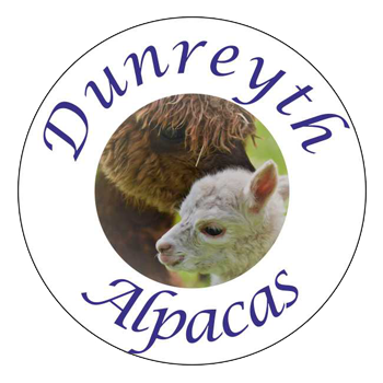 Dunreyth alpacas logo