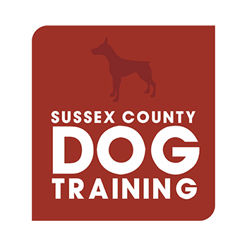 Sussex county dog training